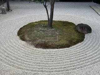 建仁寺の写真・画像素材[2383465]