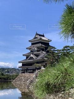 松本城の写真・画像素材[2420458]