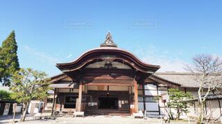 醍醐寺の写真・画像素材[3798613]
