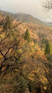 鎌ヶ岳の写真・画像素材[3877739]