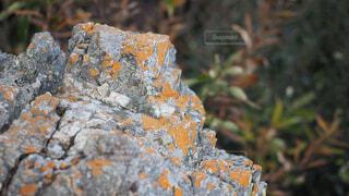 湖西連峰 仏岩の写真・画像素材[3998252]