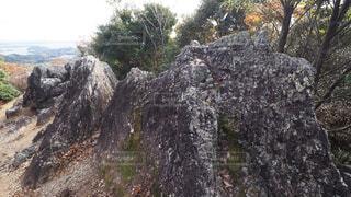 湖西連峰 ラクダ岩の写真・画像素材[3998399]