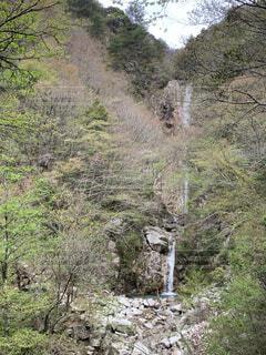 釈迦ケ岳の写真・画像素材[4365195]