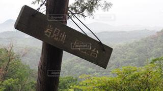 八曽山の写真・画像素材[4433410]