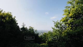 尾張白山の写真・画像素材[4488246]