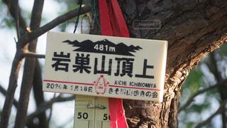 岩巣山の写真・画像素材[4543554]