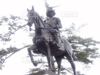 伊達政宗像の写真・画像素材[1105746]