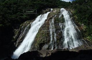 屋久島の滝の写真・画像素材[1105757]