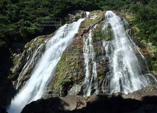 滝の写真・画像素材[1113396]