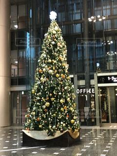 クリスマスツリーの写真・画像素材[1120719]