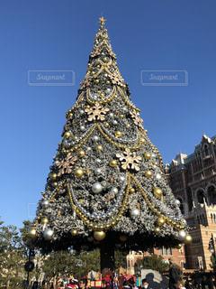 クリスマスツリーの写真・画像素材[1120726]