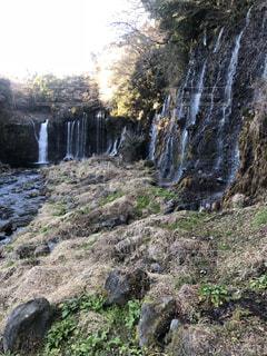 白糸の滝の写真・画像素材[1185125]