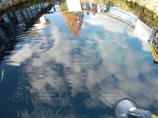 忍野八海の写真・画像素材[1218878]