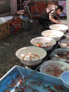 金魚売りの写真・画像素材[3174413]