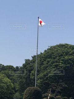フィールドに凧の飛行人の写真・画像素材[1165835]
