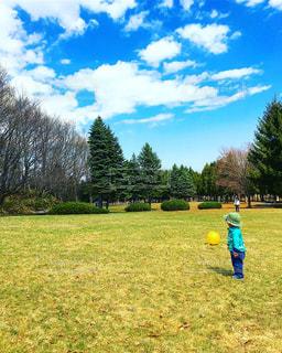 春の公園の写真・画像素材[1145298]