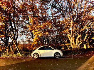 夕陽と愛車の写真・画像素材[4954707]