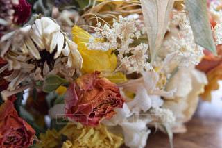 花の写真・画像素材[1130195]