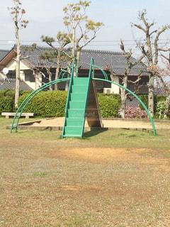 草と木がある庭の写真・画像素材[1108738]