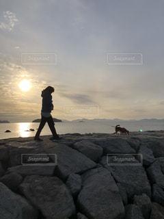 海岸を犬と散歩 - No.1109516