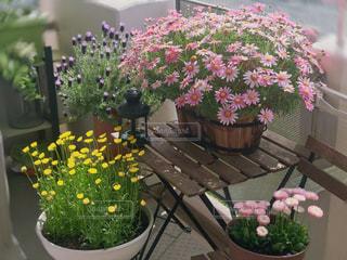 テーブルの上の花の花瓶の写真・画像素材[1107419]