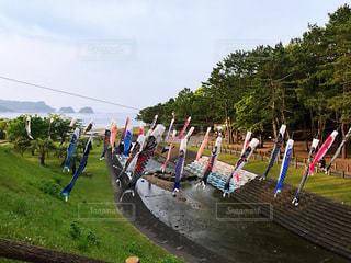 公園の人々のグループの写真・画像素材[2290234]