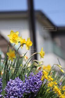 テーブルの上の花の花瓶 - No.1107732