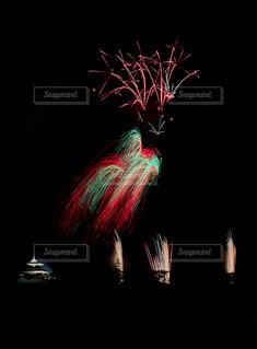 夜空の花の写真・画像素材[2335762]