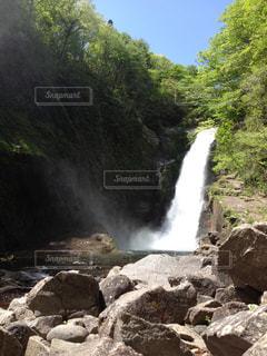 初夏の秋保大滝の写真・画像素材[161644]