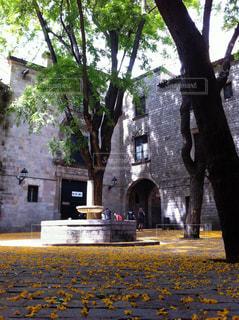 れんが造りの建物の前に木の写真・画像素材[1165952]