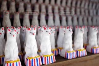 神社 お狐さんの写真・画像素材[1173650]