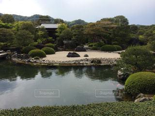 背景の水の庭の写真・画像素材[1248566]