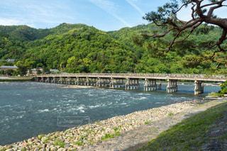京都嵐山の渡月橋の写真・画像素材[1197093]