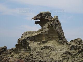秋田県のゴジラ岩の写真・画像素材[1109259]