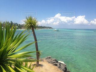 南国の海と空🏝の写真・画像素材[1125424]