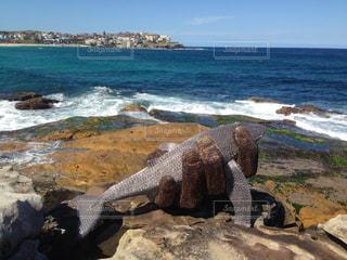 水の体の横にある岩のビーチの写真・画像素材[1125655]