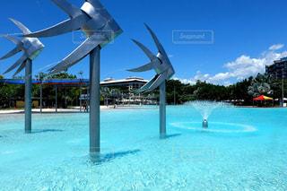 プールの水の風車の写真・画像素材[1125739]