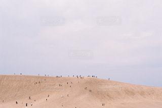 鳥取砂丘の写真・画像素材[1111258]