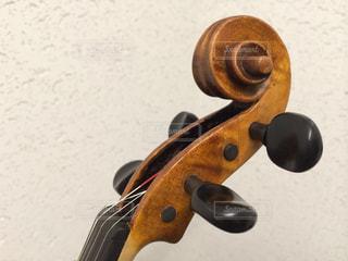バイオリンのヘッドの写真・画像素材[1111311]