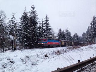 雪に覆われた鉄道の写真・画像素材[1118255]