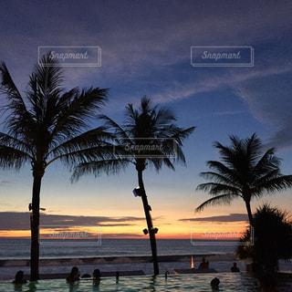 ヤシの木とビーチの写真・画像素材[1111930]