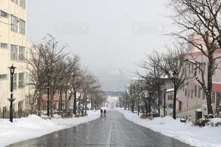 函館八幡坂から眺める函館港の冬景色の写真・画像素材[1787490]