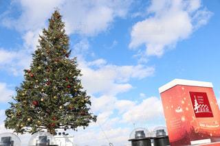函館のクリスマスの写真・画像素材[1787492]