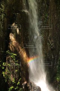 涼める虹の写真・画像素材[1394186]
