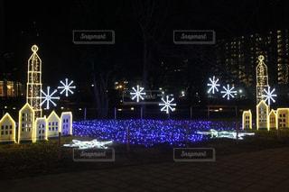 冬の知らせの写真・画像素材[1423594]