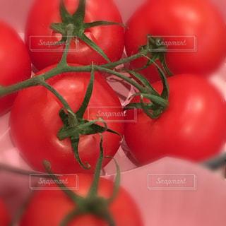 トマトの写真・画像素材[1149328]