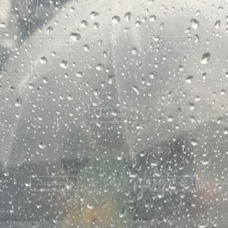 雨の日の写真・画像素材[1286554]