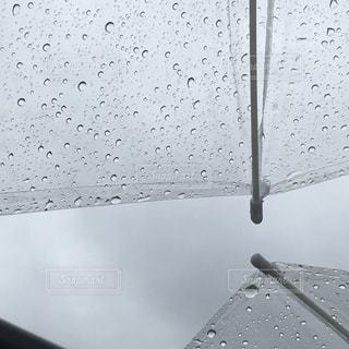 雨降りの写真・画像素材[1286576]