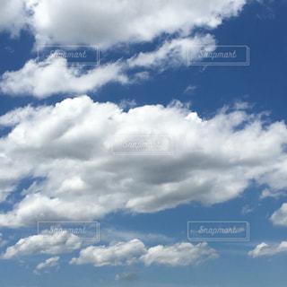梅雨あけましたの写真・画像素材[1290576]