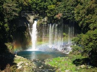 滝の写真・画像素材[1114139]